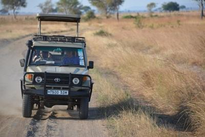 A Jeep conducts a game drive in a park in Kenya
