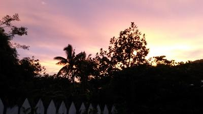 A picture of a beautiful sunset and trees in Samoa