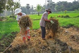 Jedź na wolontariat za granicą z rolnictwa