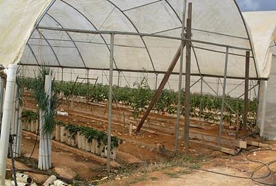 Projekt rolniczy