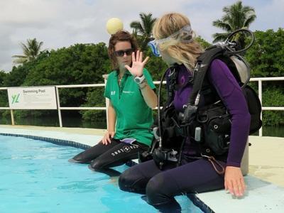 Kurs nurkowy Divemaster (dodatek) in Fiji