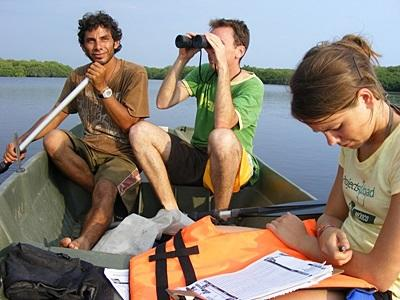 Coastal ecology conservation volunteers in Mexico observe wildlife from a boat