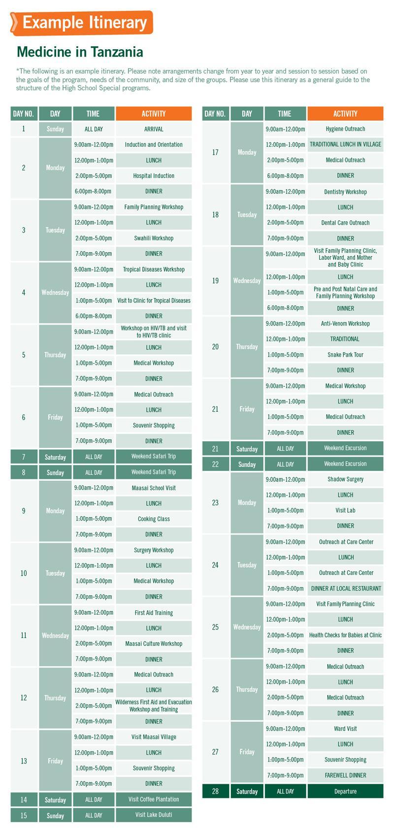 High School Special sample schedule for Medicine in Tanzania 4 tygodnie
