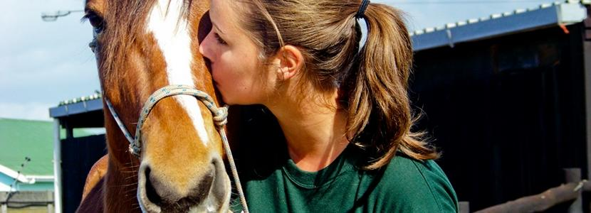 Teens volunteer with animals on the Animal Care project overseas with Projects Abroad