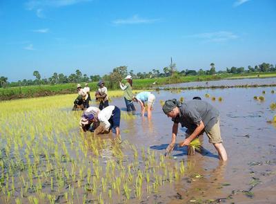 Wolontariusze podczas wykonywania pracy w ramach projektu kultury Khmerów.